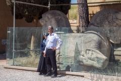 Cuplu iranian